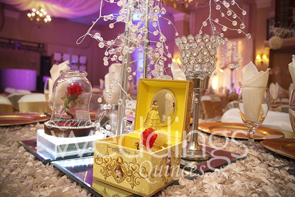 Quinceanera Themes And Colors Ambassador – ...
